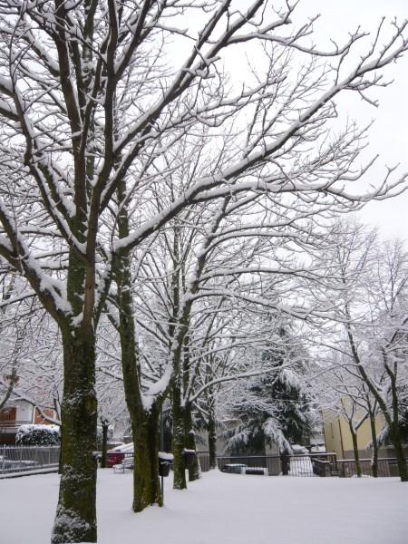 Inverno a Castel del Piano